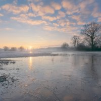 Flooded Meadows in Winter
